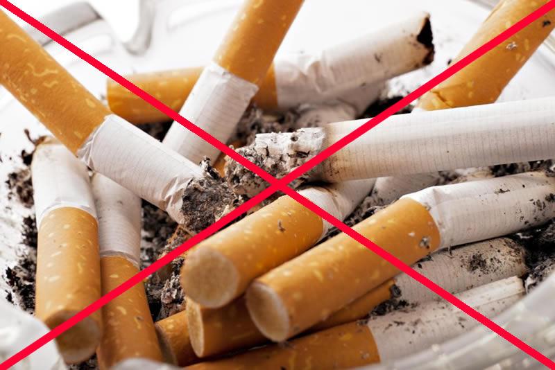 © Pixabay tobacco-2692246_1920-1024x683